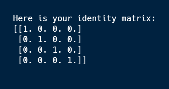 The output from our docker run command gives us a printout of an identity matrix.